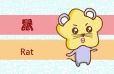 1996年属鼠最佳楼层 1楼6楼是属鼠人的本命层
