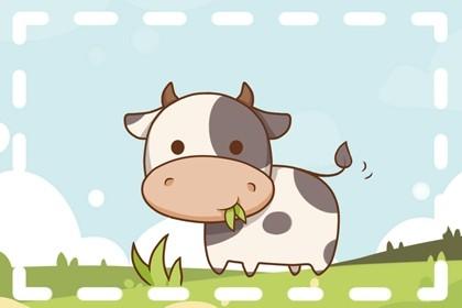 2021年属牛的五行缺什么 五行缺土
