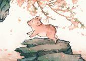 1983年属猪人的后半生命运 运势高速上升晚景好