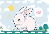 属兔几日出生大富大贵 看好时间了解运势