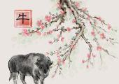 2021金牛年8月生肖牛健康方面要注意作息规律