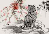 属虎的最旺年和旺月 运势提升事业顺利