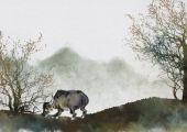 重阳节出生的属牛人命运 晚年财运滚滚