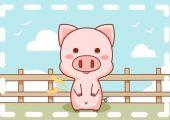 属猪人在2021牛年八月桃花运如何 戴什么能转运