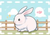 2021年九月生肖兔异性缘如何 能遇见心仪之人吗