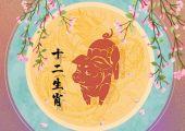 2021年九月生肖猪有正缘桃花吗 能遇见真爱吗
