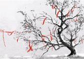 为什么都说中秋节出生不好 前期事业发展缓慢