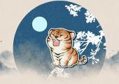 1962年出生的属虎人在2022本命年财运上机遇多多