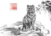 1962年属虎的是什么水命 命中有偏财吗