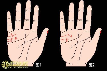 婚姻线怎么看     手相婚姻线分叉图解
