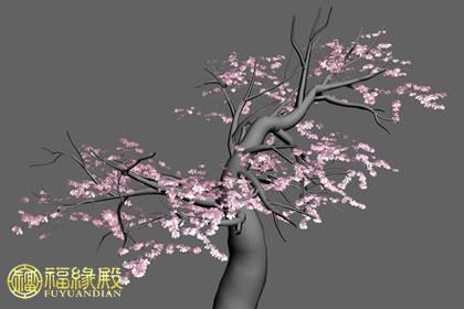解析:家里种桃树好不好